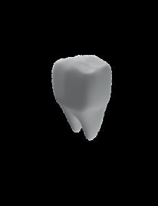 aurora dental tooth